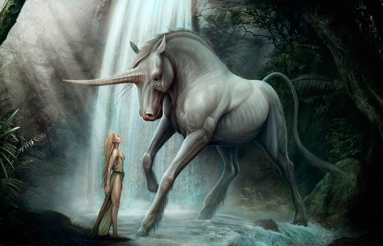 Unicornio y princesa